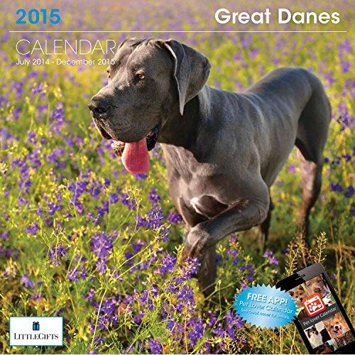 Little Gifts Great Dane 2015 Calendar 8136