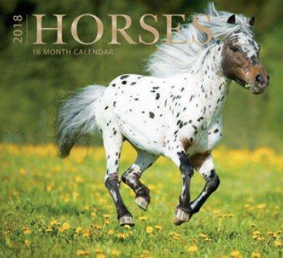 Horses 2018 Wall Calendar 16-month