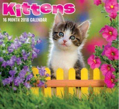 Kittens 2018 Wall Calendar 16-month