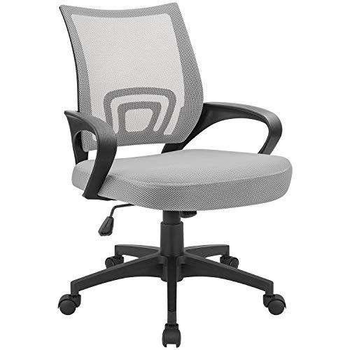 Devoko Ergonomic Office Chair Mid Back Swivel Mesh Chair Height Adjustable Lumbar Support Computer Desk Chair with Armrest Grey