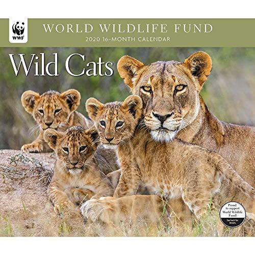 2020 Wild Cats WWF Wall Calendar by Calendar Ink