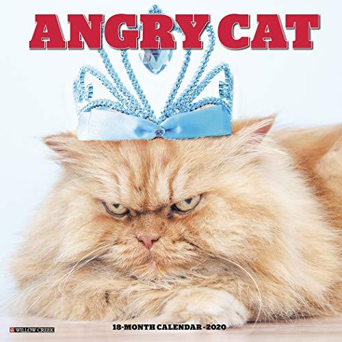 Angry Cat 2020 Wall Calendar