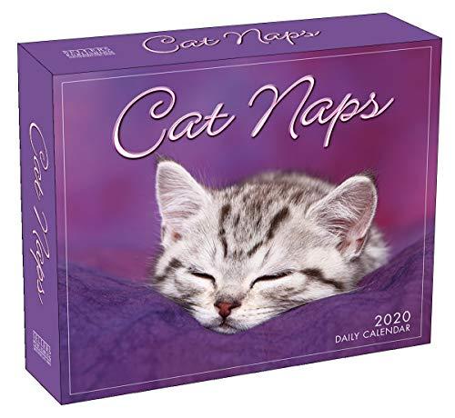 Cat Naps 2020 Day-to-Day Desk Calendar