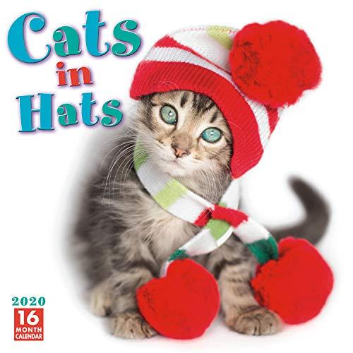 Cats in Hats 2020 Wall Calendar