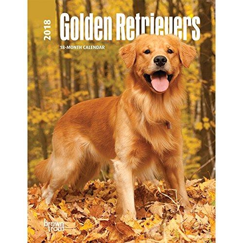 Golden Retrievers 2018 Weekly Engagement Calendar