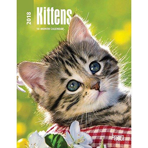 Kittens 2018 Weekly Engagement Calendar