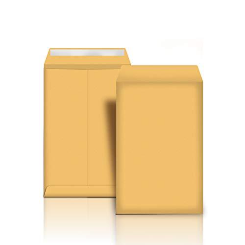 AmazonBasics Catalog Mailing Envelopes Peel Seal 9x12 Inch Brown Kraft 100-Pack - AMZP13