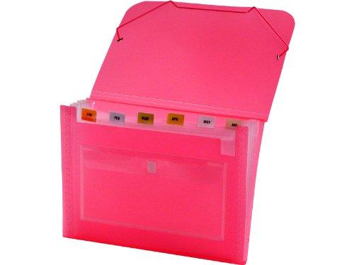 Lion Clear-Line 7-Pocket Poly Expanding File Transparent Pink 94500-PK