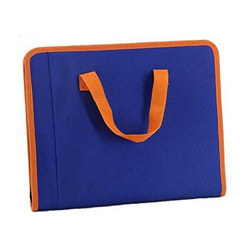 28 x 355 X 43 CM Blue Document Organizer A4 13-Pocket Expanding File Folder